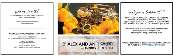 Alex and ani flyer update