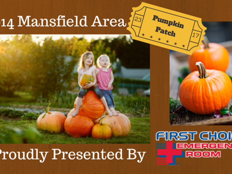 Find the perfect pumpkin patch close to fort worth! Easy clean.