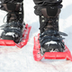 Modern equipment makes snowshoeing accessible to all age groups.