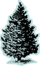 Christmas Tree Craft - start Dec 23 2014 0200PM