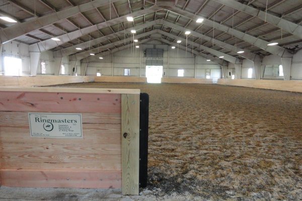 On Saturday, equitation classes in the newly refurbished indoor arena ran concurrently with those in the outdoor arena.