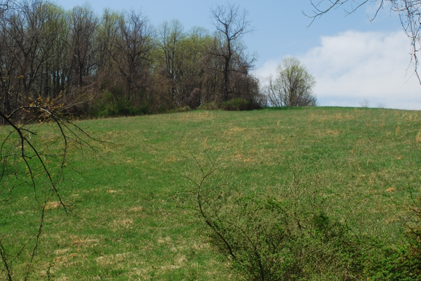 Seeing the beautiful countryside is part of the charm of spending time in Springlawn.