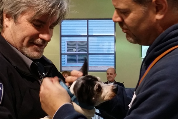 Angelou receives her new collar at Animal Friends.