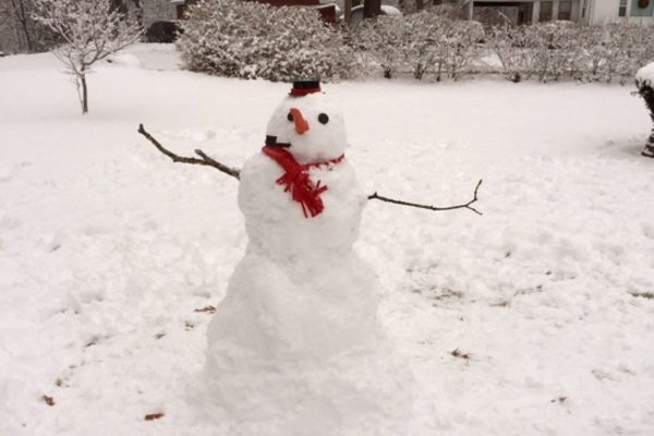 A snowman built by Dirk and Jack Anderson!