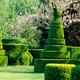 Longwood Topiary