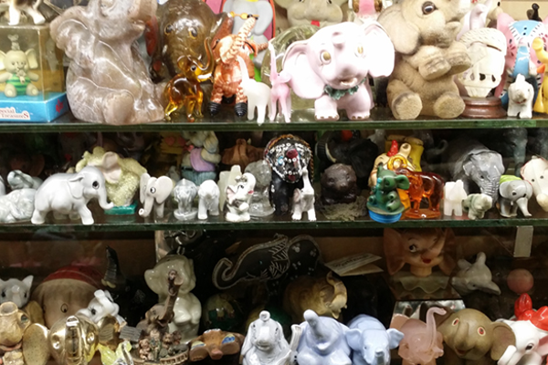 You can find every type of elephant figurine imaginable at Mister Ed's.