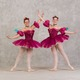 """Courtesy photo Each production includes performances by local professionals and members of the Delaware Dance Company. With the 30th anniversary production, it is interesting for those involved with """"The Nutcracker"""" to look back and remember everyone who has played different roles."""