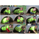 MuckFest 2015 Tunnel Collage – the various reactions to crawling in the mud by the various women was fun to watch!  Here top (left to right) are: Shelagh Boudreau, Sharon Pierce, Amie Cafferty Middle Row: Denise McIntyre, Sue Panilaitis, Jennifer Indingaro, Bottom Row: Linda Poli, Patty Schulte, Barbara Fleming-McFadyen. .