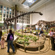 What Does the Future Hold for the Carnegie Museums of Pittsburgh  - Apr 30 2015 0241PM