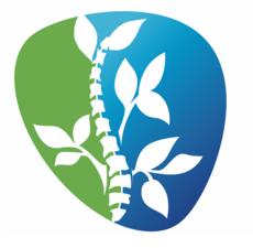 Medium logo 20only