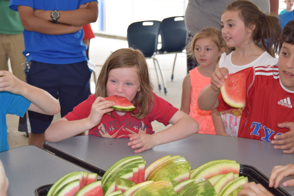 Contestants in the watermelon eating contest dig in.
