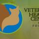 Veterinary Healing Center Folsom - Folsom CA