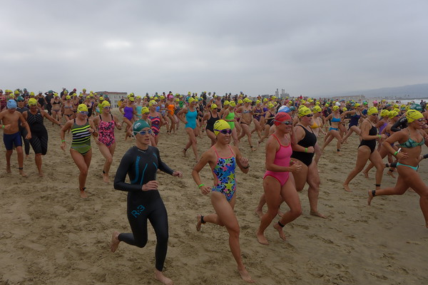 Photo credit: Dwight Crum Pier-to-Pier Swim