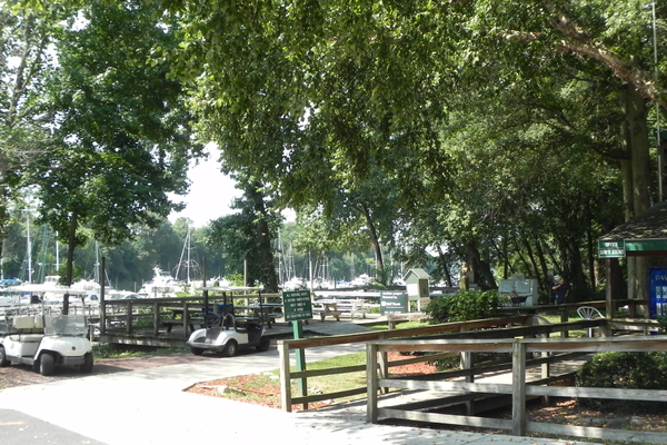 There are benches along the trail where you can watch boats of all sizes come through the C&D Canal.