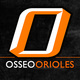 Osseo Football Finishes Strong in 48-21 Win - Oct 17 2015 1045AM