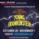 Carroll 20theatre 20  20young 20frankenstein 20  20game 20slide
