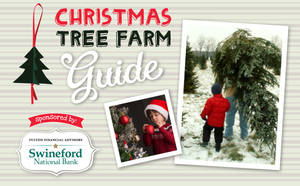 The 2015 Area Christmas Tree Farm Guide Sponsored by Swineford Bank and Fulton Financial Advisors - Nov 03 2015 0627AM