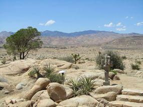 Medium desert garden with a view