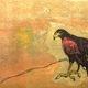Night Listening Hawk