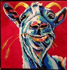 Medium goat