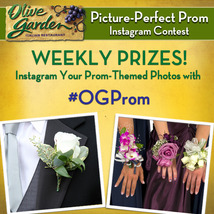 Medium final instagram prom image 1