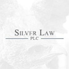 Medium silver law logo 2