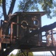 Thumb build 20a 20treehouse