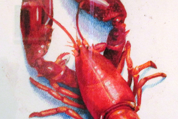 'Lobster Red' by Cindy Procious.