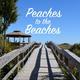 12th Annual Peaches to the Beaches Yard Sale - Georgias Longest - Feb 29 2016 0100PM