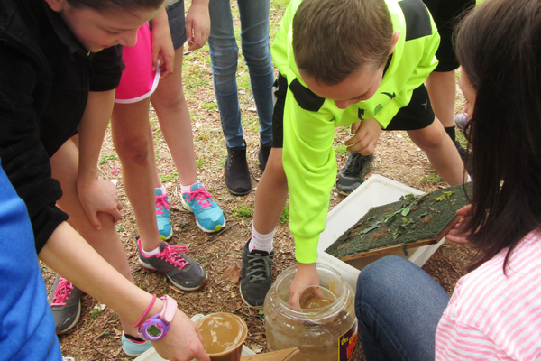 Students pour muddy water onto a bare board and a board covered with leaves to show how plants hold runoff in place.