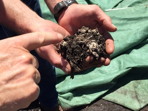 Medium learning 20about 20compost