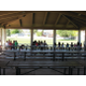 Kids and families sit down to eat lunch under the pavilion at City Park as part of the Seamless Summer Lunch Program put on by the Granite School District. —Travis Barton