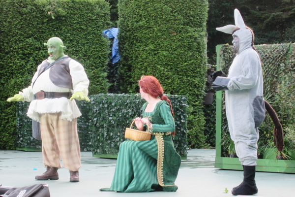Shrek, Fiona and Donkey undertake a voyage, during which love blossoms.