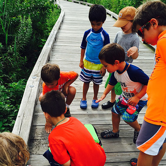 Preschool group on boardwalk