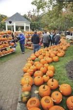 Laconia New Hampshire Celebrates Pumpkin Festival - Aug 29 2016 0218PM