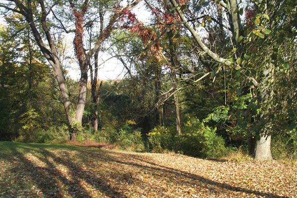 Penn Forest Natural Burial Park