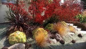 Medium plants 6