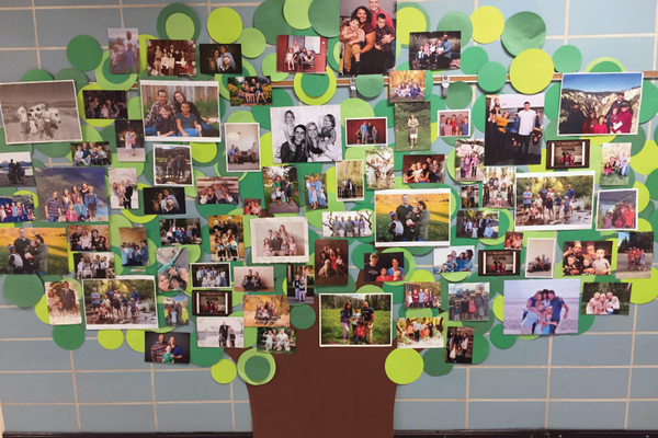 Students show off their families in a family-tree display. (Sarah Madsen/Howard Driggs Elementary)