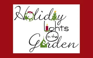 Medium holidaylights