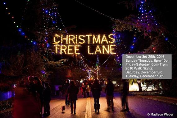 - Christmas Tree Lane Fresno