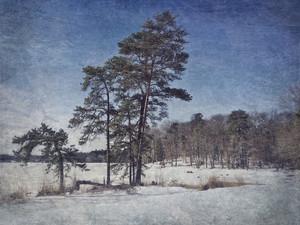 Medium e06ab56 kklinedinst wintercashlake 20klindinst