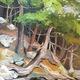 Thumb waterline 20ii 2011x15 20325