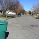 Recycling curbside bins line streets in Murray, ready for pickup.