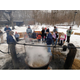 Maple Syruping at Three Rivers Park District photo provided by Three Rivers Park District