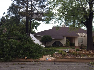 Medium storm damage 3 29 17