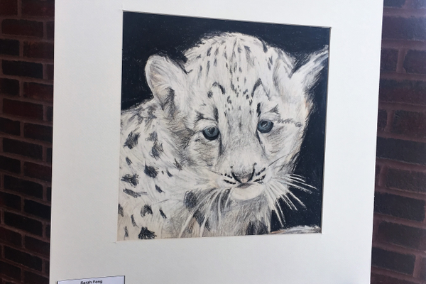 2017 District 279 Student Art Show. Student artist Maple Grove Middle School student Sarah Feng (photo by Wendy Erlien)