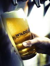 Medium wildcard 20brewing 20company20140314 135 2
