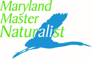Master 20naturalists