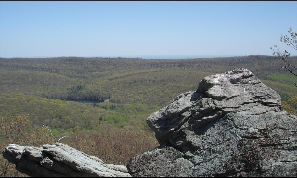 Let a Visit to Michaux Forest Rock Your World   Susquehanna Life