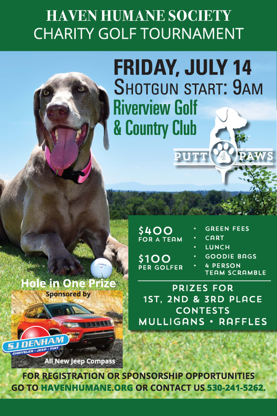 Putt 204 20paws 20poster